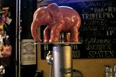 Delirium Tremens tap at Paddy Long's