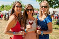 40th Annual Virginia Wine Festival - Wine Festival in Washington, DC