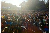 Hardly Strictly Bluegrass - Music Festival in San Francisco.