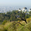 Griffith Park in Los Angeles