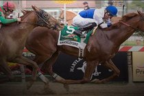 Preakness-stakes_s210x140