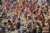 Whole Earth Festival - Festival | Arts Festival in San Francisco.