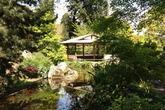 L'Orto Botanico (Botanical Gardens) - Museum | Park in Rome