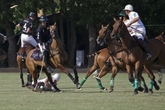 International-polo-cup_s165x110