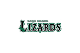 Long-island-lizards-lacrosse_s165x110