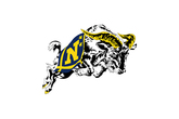 Navy-midshipmen-football_s165x110