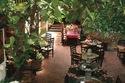 Pancho's Restaurant