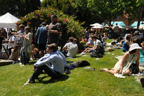 Tiburon-wine-festival_s210x140