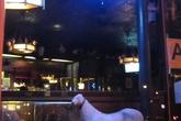 White-horse-tavern_s165x110