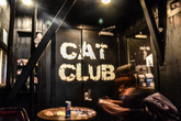 Cat Club - Bar | Club in San Francisco.