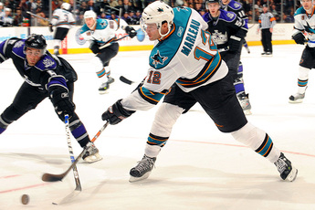 San Jose Sharks