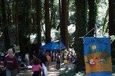 Kings Mountain Art Fair - Arts Festival | Art Exhibit | Outdoor Event in San Francisco.