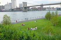 Brooklyn Bridge Park - Live Music Venue | Outdoor Activity | Park in New York.