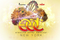 Electric Daisy Carnival New York 2013 - Arts Festival | Music Festival | DJ Event | Concert | Party in New York.