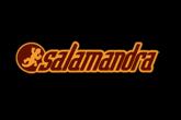 Salamandra (L'Hospitalet de Llobregat) - Concert Venue in Barcelona