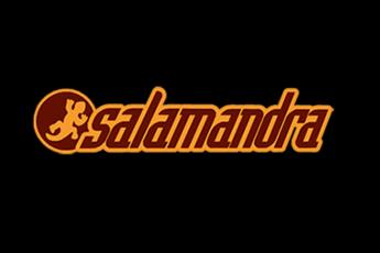 Salamandra (L'Hospitalet de Llobregat) - Concert Venue in Barcelona.