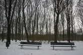 Tiergarten - Outdoor Activity | Park in Berlin