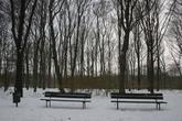 Tiergarten - Outdoor Activity | Park in Berlin