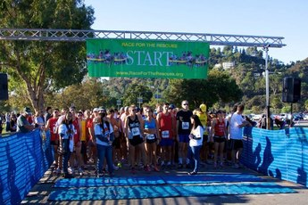 Race for the Rescues - Running in Los Angeles.