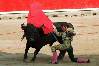 The majestic and violent bullfighting in Pamplona.