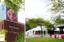 Museum-of-science_s210x140