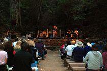 Old Grove Festival - Arts Festival | Music Festival | Outdoor Event in San Francisco.