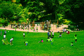 Golden Gate Park - Culture | Outdoor Activity | Park in SF