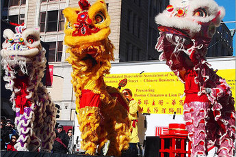 Chinese Lion Dance Parade in Boston