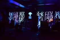Neck of the Woods - Live Music Venue | Concert Venue | Bar | Lounge in San Francisco.