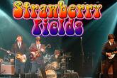 Strawberry-fields_s165x110