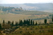 Chianti Region - Culture | Drinking Activity | Outdoor Activity | Winery in Florence.