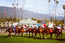 Santa Anita Park (Arcadia, CA) in Los Angeles.