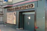 Bloodhound_s165x110
