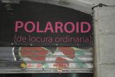 Polaroid_s165x110