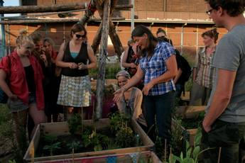 City Farmers (Stadsboeren) Festival - Food Festival   Flea Market in Amsterdam.