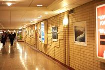 FotoWeek DC 2014 - Arts Festival | Photography Exhibit in Washington, DC