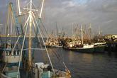 The-great-provincetown-schooner-regatta_s165x110