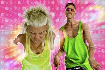 Die Antwoord