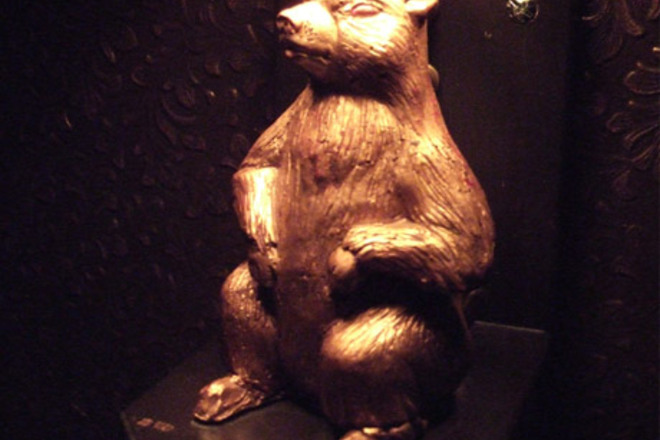 Photo of Golden Gopher