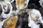 Oysterpalooza! - Food &amp; Drink Event | Music Festival in San Francisco.