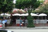 The Ivy Restaurant - American Restaurant | Diner in Beverly Grove, LA