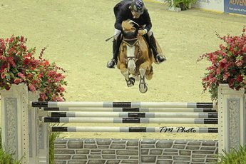Washington International Horse Show  - Equestrian | Sports in Washington, DC.