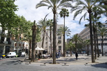 Rambla del Raval - Nightlife Area in Barcelona.