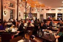Oyamel Cocina Mexicana - Mexican Restaurant | Tapas Bar in Washington, DC.