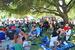 Redwood Mountain Faire - Music Festival in San Francisco