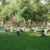 Harvard Square - Landmark | Outdoor Activity | Square in Boston.