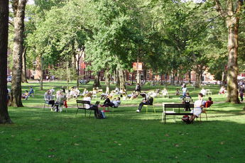 Harvard Square - Landmark | Outdoor Activity | Square in Boston.