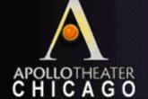 Apollo Theater  - Theater in Chicago