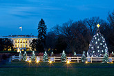 The National Christmas Tree Lighting - Concert | Holiday Event | Show in Washington, DC.