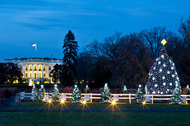 The-national-christmas-tree-lighting_s268x178